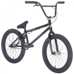 Academy Trooper 2021 19.5 Black with Polished BMX bike